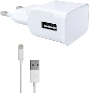 Зарядное устройство телефона 12V 1xUSB 2.1 A 3 (micro USB/iPhone 4.5)